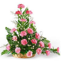 Arng of Carnations