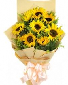 8 sunflowers bouquet