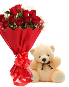 12 Red Roses and a cuddly Teddy Bear